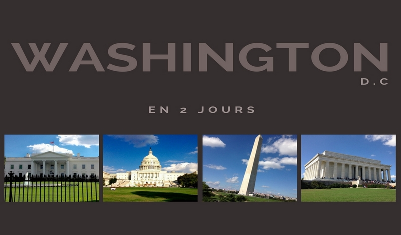 washington vignette blog